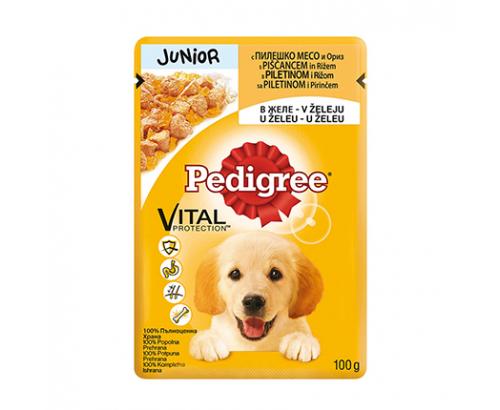 Храна за кучета Педигри Джуниър 100г Пауч Пилешко Месо